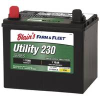 Blain's Farm & Fleet Lawn and Garden Battery from Blain's Farm and Fleet