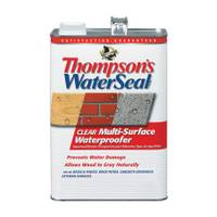 Thompson's WaterSeal Clear Multi - Surface Waterproofer from Blain's Farm and Fleet