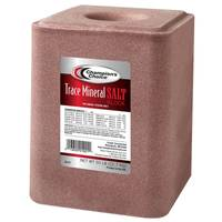 Champion's Choice Trace Mineral Salt Block from Blain's Farm and Fleet