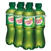 Canada Dry Ginger Ale - 6 Pack from Blain's Farm and Fleet