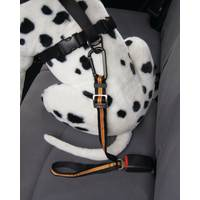 Kurgo Direct to Seatbelt Tether from Blain's Farm and Fleet