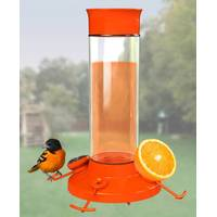 Perky-Pet Oriole Feeder from Blain's Farm and Fleet