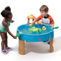 Step 2 Duck Pond Water Table from Blain's Farm and Fleet
