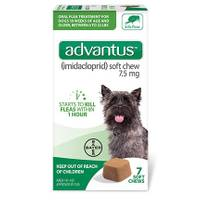 Bayer Advantus Oral Flea Treatment Soft Dog Chews from Blain's Farm and Fleet