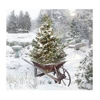 Timeless by Design Lighted Garden in Winter Canvas from Blain's Farm and Fleet