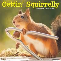 Willow Creek Press Getting Squirrelly 2018 Calendar from Blain's Farm and Fleet