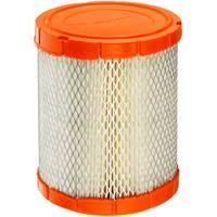 FRAM CA11048 Extra Guard Radial Seal Filter from Blain's Farm and Fleet