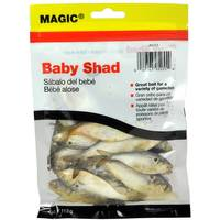 Magic 4 oz Natural Preserved Baby Shad from Blain's Farm and Fleet
