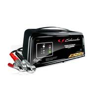 Schumacher 50/10/2 Amp Battery Charger from Blain's Farm and Fleet