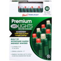 Seasons 4 5mm 50L Candy Cane F&F LED Light Set from Blain's Farm and Fleet