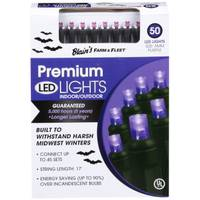 Seasons 4 50 Orange Frosted LED Lights from Blain's Farm and Fleet