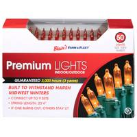 Seasons 4 Mini 50L Amber F&F Light Set from Blain's Farm and Fleet
