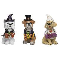 Transpac Imports Inc. Resin Trick or Treat Pup with Sign Assortment from Blain's Farm and Fleet