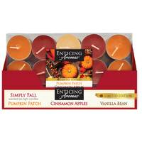 Empire 15-Count Simply Fall Fragranced Tealights from Blain's Farm and Fleet