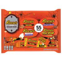 Reese's 55-Piece Snack Size Bag from Blain's Farm and Fleet