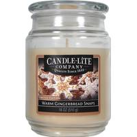 Candle-Lite 18 oz Gingerbread Snaps Jar Candle from Blain's Farm and Fleet