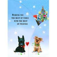 LPG Greetings 12-Count Ready for Christmas Trifold Cards from Blain's Farm and Fleet