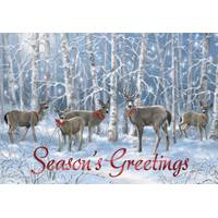 Leanin' Tree 10-Count Seasons Greeting Deer Classic Cards from Blain's Farm and Fleet