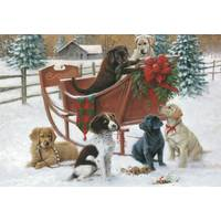 Leanin' Tree 10-Count Puppy Classic Christmas Cards from Blain's Farm and Fleet