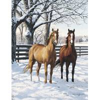 Leanin' Tree 12-Count Horse Couple Notelet Holiday Cards from Blain's Farm and Fleet
