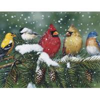 Leanin' Tree 12-Count Bird Notelet Christmas Cards from Blain's Farm and Fleet