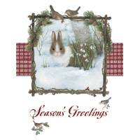 Leanin' Tree 12-Count Bunny Notelet Holiday Cards from Blain's Farm and Fleet