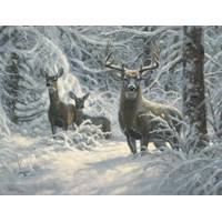 Leanin' Tree 12-Count Deer Notelet Christmas Cards from Blain's Farm and Fleet