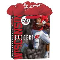 Lang Wisconsin Badgers Large GoGo Gift Bag from Blain's Farm and Fleet