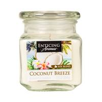 Enticing Aromas 10oz Coconut Breeze Candle from Blain's Farm and Fleet