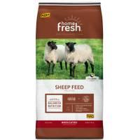 Kent 50 lb Home Fresh 15 Pelleted Finish Sheep Feed from Blain's Farm and Fleet