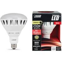 FEIT Electric 30W/250W Dim LED BR40 Bulb 3000K Medium from Blain's Farm and Fleet