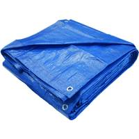 Agrimaster All Purpose Tarp from Blain's Farm and Fleet