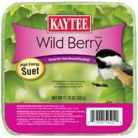 Kaytee Wild Berry High Energy Suet from Blain's Farm and Fleet