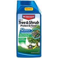 Bayer Advanced Tree and Shrub Protect and Feed Concentrate from Blain's Farm and Fleet