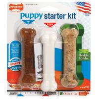Nylabone Puppy Starter Kit from Blain's Farm and Fleet