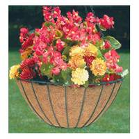 Panacea Growers Style Hanging Basket from Blain's Farm and Fleet