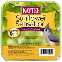 Kaytee Sunflower Sensation High Energy Suet from Blain's Farm and Fleet