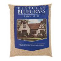 Mountain View Seeds Kentucky Bluegrass Grass Seed from Blain's Farm and Fleet
