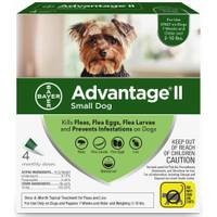 Advantage II Once A Month Topical Flea Treatment for Dogs from Blain's Farm and Fleet