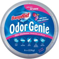 DampRid Odor Genie from Blain's Farm and Fleet
