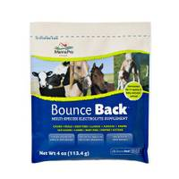 Manna Pro BounceBack Electrolyte from Blain's Farm and Fleet