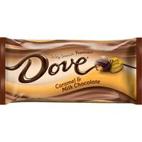 Dove Milk Chocolate with Carmel Miniatures from Blain's Farm and Fleet