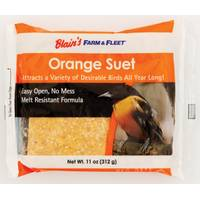Blain's Farm & Fleet Orange Suet from Blain's Farm and Fleet