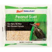 Blain's Farm & Fleet Peanut Suet from Blain's Farm and Fleet