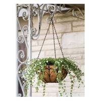 Panacea Classic Finial Hanging Basket from Blain's Farm and Fleet