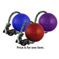Jolly Pets Romp-n-Roll Dog Toy from Blain's Farm and Fleet