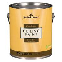 Benjamin Moore 1 Gallon Waterborne Ceiling Paint from Blain's Farm and Fleet
