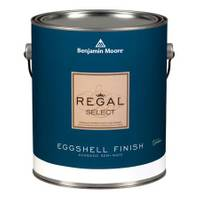 Benjamin Moore 1 Gallon Regal Eggshell Finish Interior Paint from Blain's Farm and Fleet