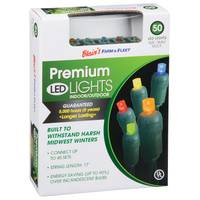 Blain's Farm & Fleet Premium Multicolor 50-Light LED Light Set from Blain's Farm and Fleet