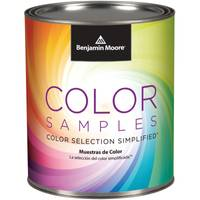 Benjamin Moore Pint Color Sample from Blain's Farm and Fleet
